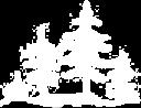 Link Decorative Image